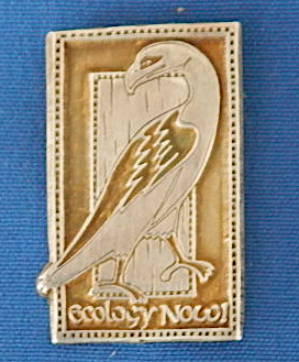 Ecology Now eagle pin