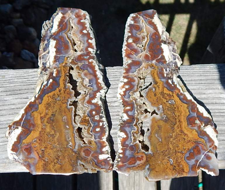 wendover plume agate cut and polished specimen pair