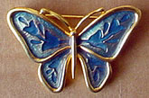 AG butterfly pin